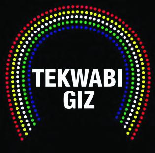 Tekwabi giz logo